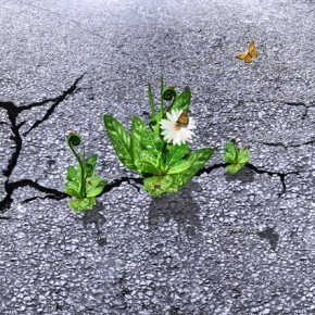 Resilience nám pomůže zvládnout budoucnost
